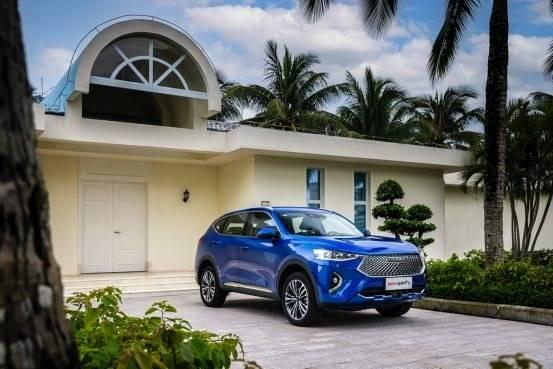 棕榈树下的汽车  描述已自动生成